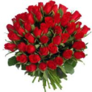 51 long stem roses (any color)