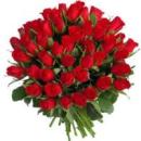 51 rosas de cualquier color (largas)